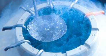 04 Nov 2013 --- Egg storage for in vitro fertilisation (IVF). Tube of eggs in cryogenic (frozen) storage. --- Image by © Science Photo Library/Corbis