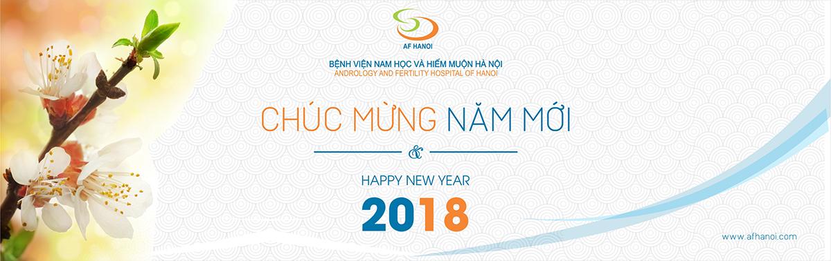 Giang sinh 2017 3
